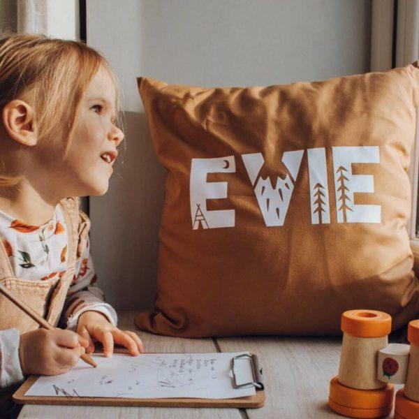 Personalized explorer cushion